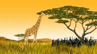 Une girafe arrive pour manger les feuilles de l'arbre où Kirikou se trouve (Kirikou et les bêtes sauvages)