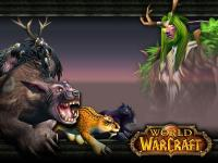 Fond d'écran druide (world of Warcraft)