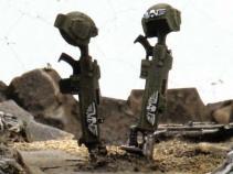 Les tombes des soldats de la Garde Impériale