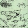 chasseurs Spacewolfs de l'Atlantis d'Albator 78 (Arcadia)