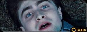 Entête Otakia d'Harry Potter et les reliques de la mort
