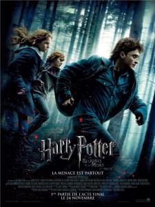 Afficher d'Harry Potter et les reliques de la mort