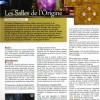 Page du Hors Série Cataclysm de Canard PC / Millenium