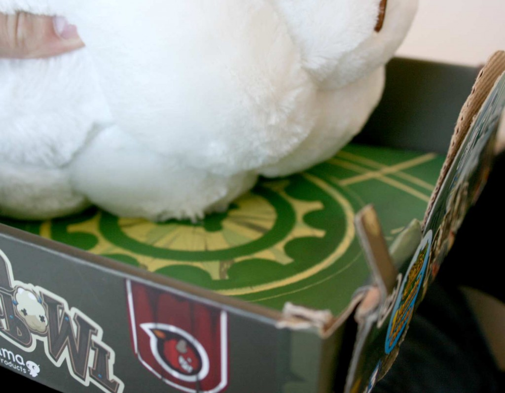 La boufballe est tenue au packaging par un fil qu'ils faut couper (Wakfu)
