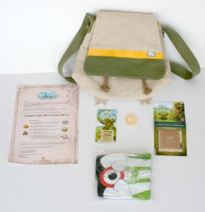 Contenu du pack promotionnel de lancement do MMO Wakfu en 2012