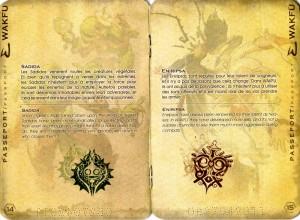 Passeport (Wakfu) page 14