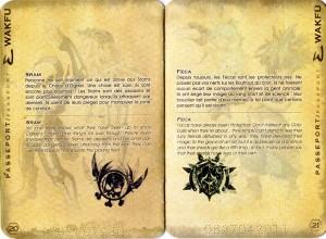 Passeport (Wakfu) page 20