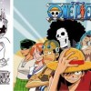 Cette illustration de Dofus est un hommage à One Piece de Eiichirô Oda