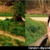 Comparaison entre l'image DVD et la version en ligne de la websérie le visiteur du futur particulièrement visible dans les premiers épisodes