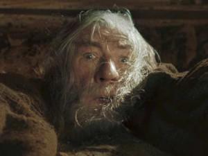 fuyez pauvre fous (Gandalf)