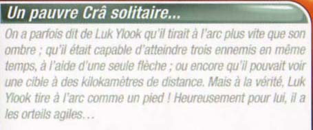 descriptif de Luk Ylook