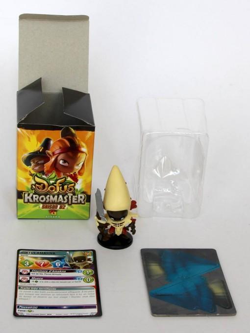 Riktus Amakna - Krosmaster (boite)