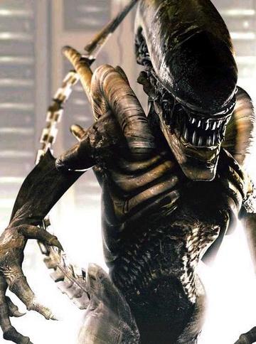 Photo d'un alien
