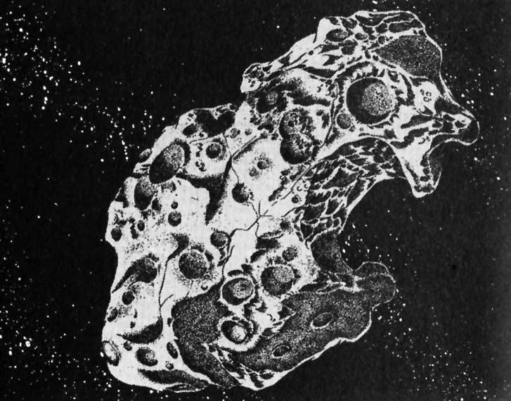 L'astéroïde Reiji 6565 existe vraiment et à été baptisé en hommage à l'auteur qui lui a donné son prénom
