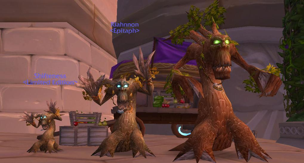 Screenshot of the day de druides en forme soin